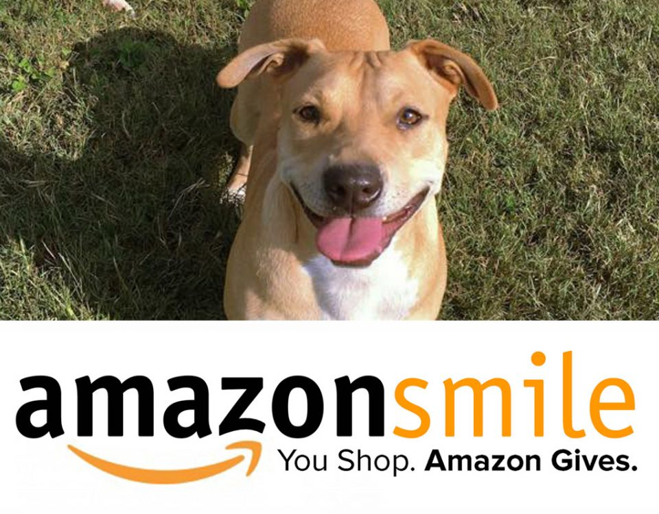 Amazon Smile - A Place to Bark